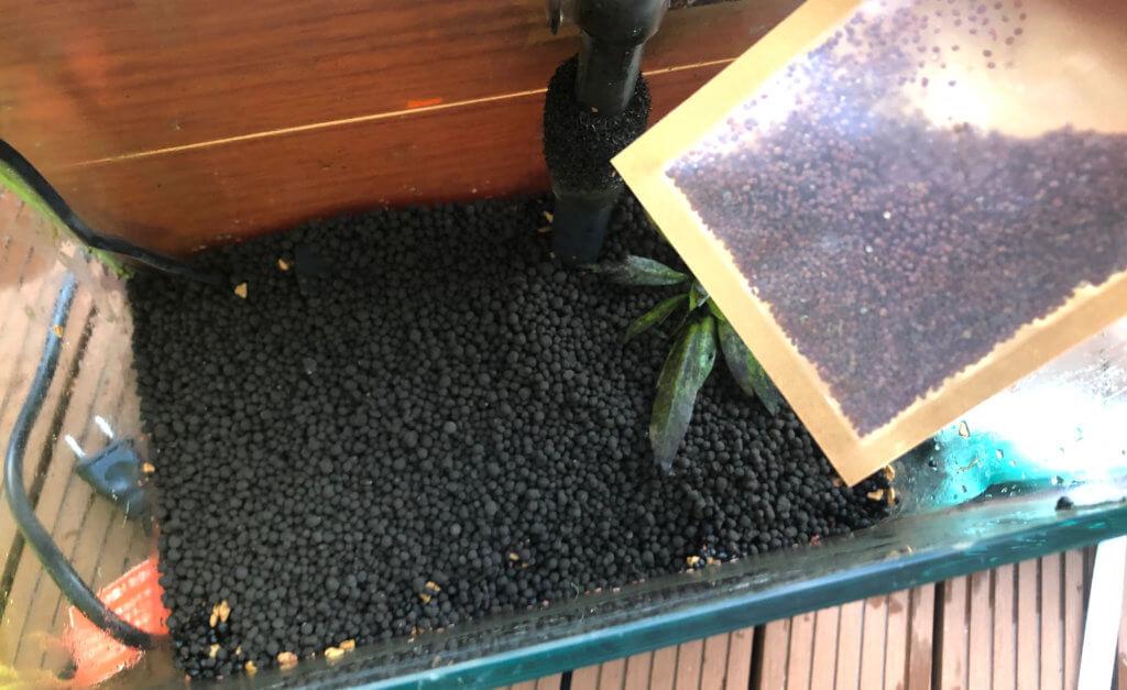 Wishで買ったミニリーフの種はたくさん入っているので、とにかく万遍なく蒔きました